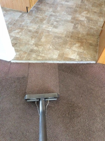 Kitchen traffic Carpet Cleaning
