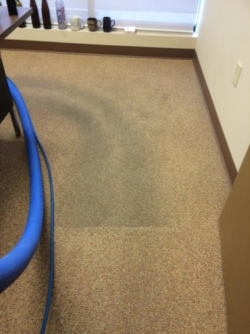 Carpet Cleaning – Office Traffic