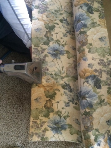 Urine stain removal from upholstery
