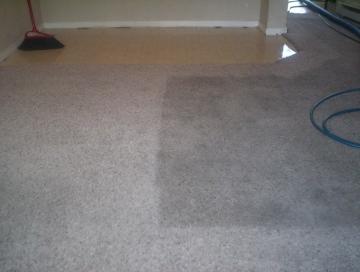 Carpet Cleaning in progress