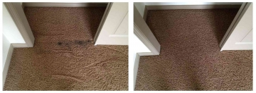 Carpet Cleaning | Miscellaneous Stain Removal