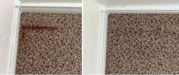 Carpet Cleaning | Rust Stain Removal