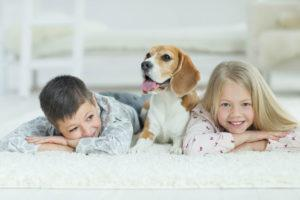 Professional Carpet Cleaning Boise, Idaho
