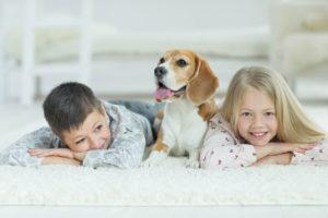Professional Carpet Cleaning Nampa