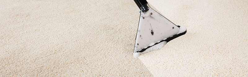 Carpet Cleaning Eagle Idaho