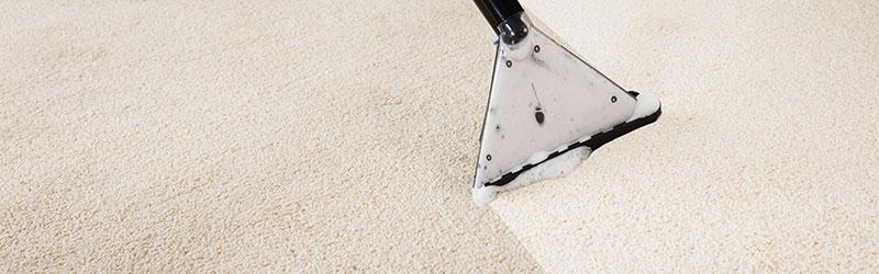 Carpet Cleaning Washington, Utah